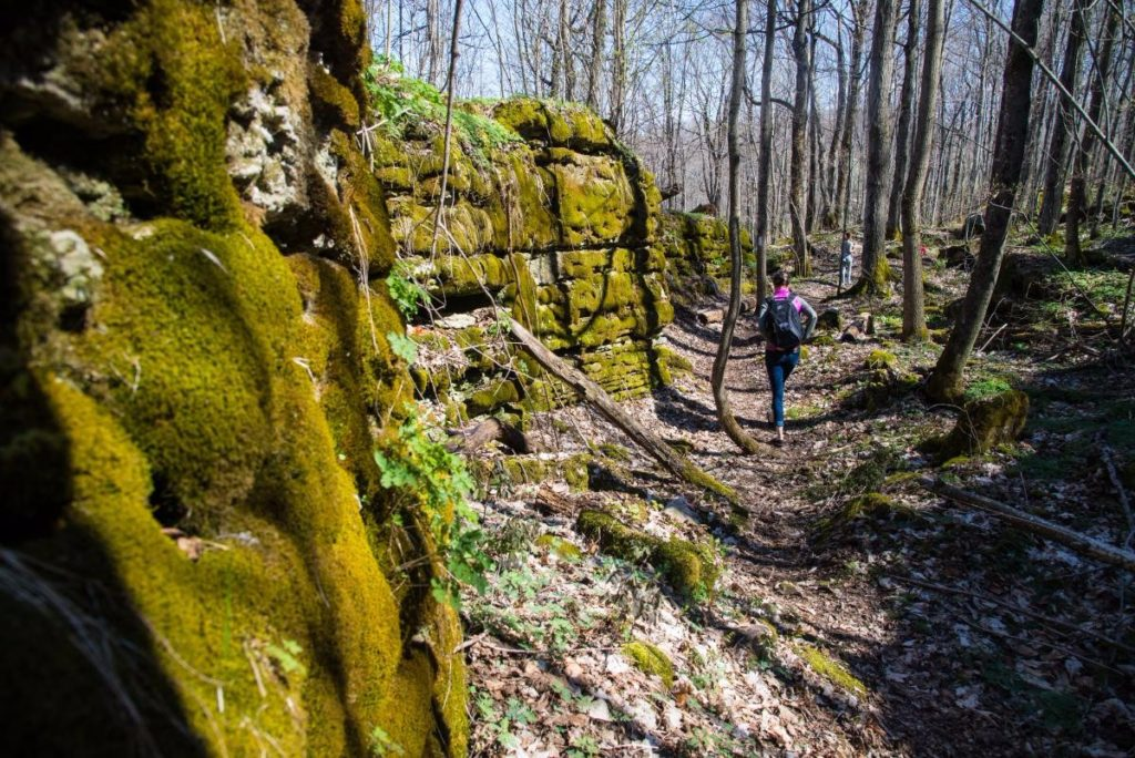 Fossil Glen Bruce Trail Hike
