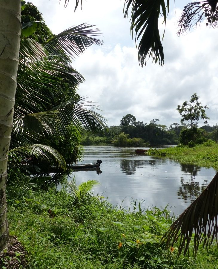 Along the Upper Suriname River
