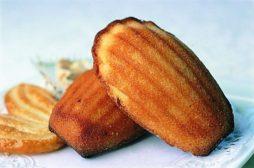 recipe madeleines