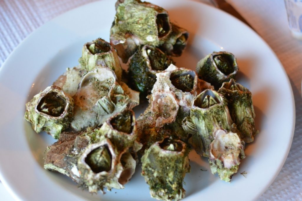 Barnacles are an Azorean treat