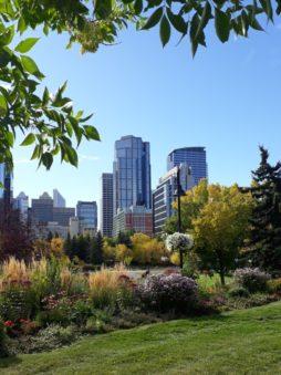 Calgary skyline